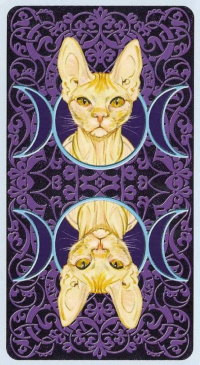 Таро с фиолетовой рубашкой